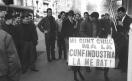 Sciopero nazionale unitario dei lavoratori metallurgici per il contratto - Corteo da Sesto San Giovanni a Milano - Asino in corteo - Cartelli di protesta. 27/04/1966